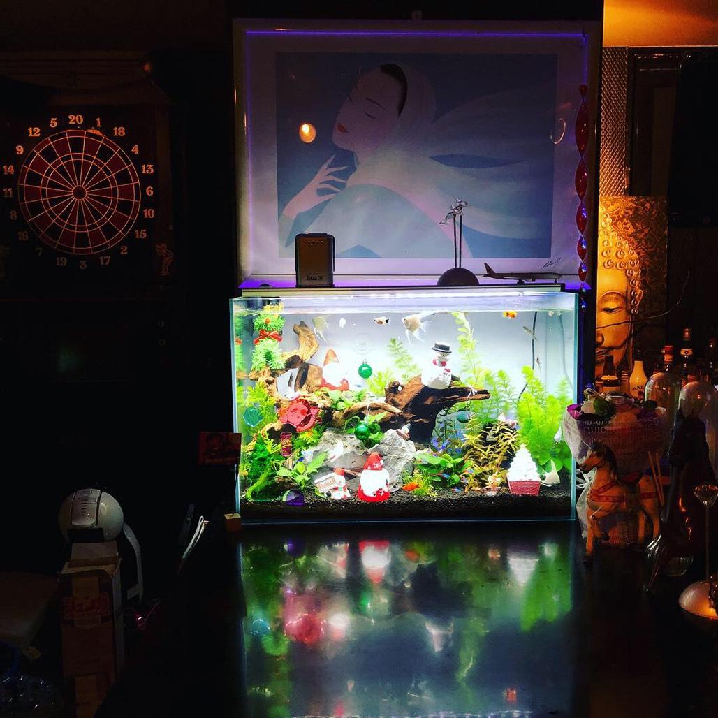 水槽リース熊本